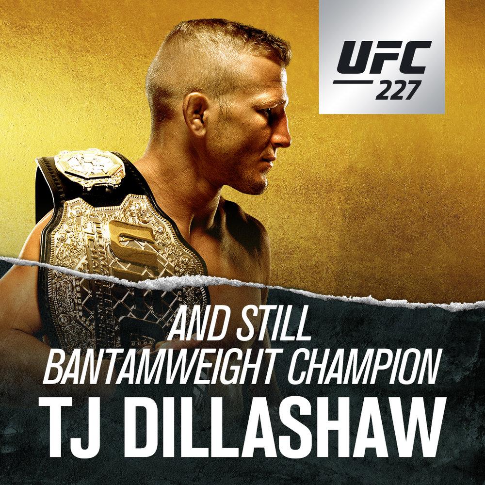 UFC227_WINNER_TJ_SQ.jpg