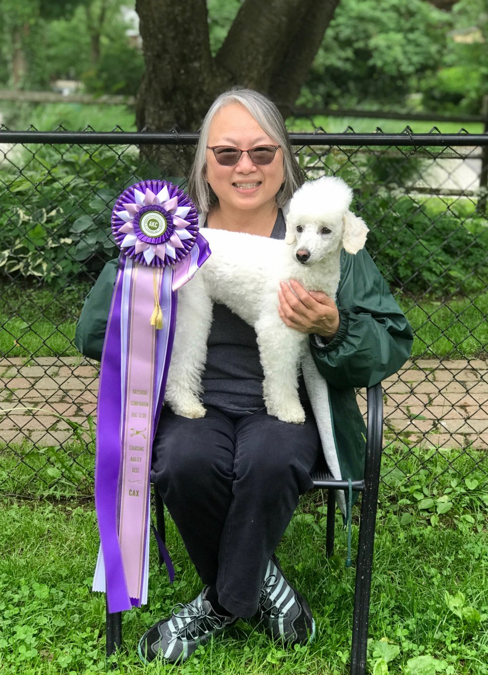 Nyssa earned her AKC Coursing Ability Excellent (CAX) title on Sunday, June 3, 2018 in East Freehold, NJ held by Bayshore Companion Dog Companion.