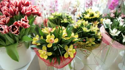 flower_pots.jpg