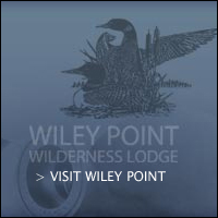 Wiley Point.jpg