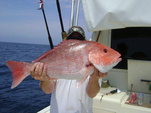 BWC-Snapper-Panama-City-Beach-Charter-Fishing.jpg