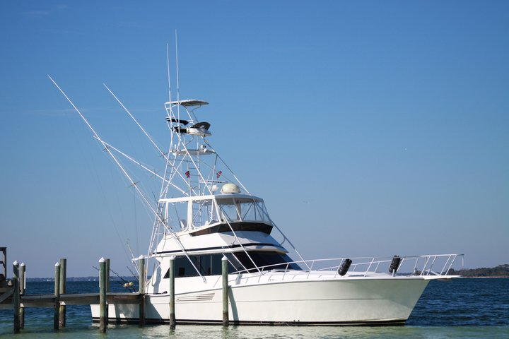 Panama city beach charter fishing offshore trip april 20th for Panama city beach charter fishing