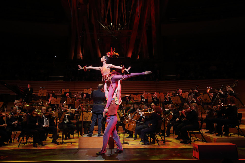 Firebird  | Toyota Symphonies for Youth | LA Phil | Disney Hall    photo: Paul Cressey