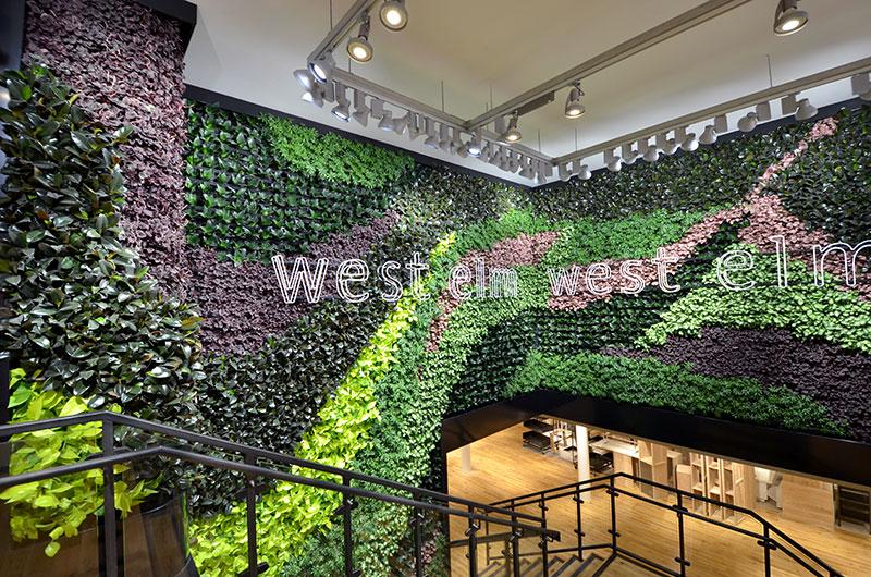 Living Wall-West Elm.jpg
