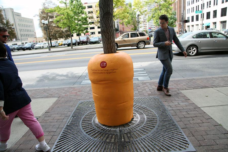 MOF-Carrot-x.jpg