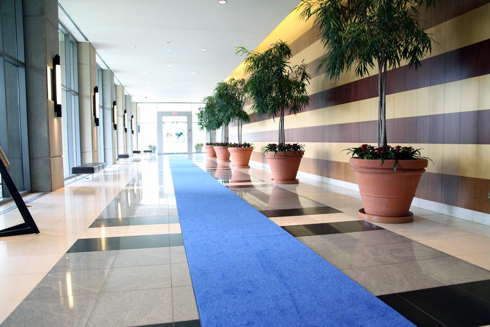 DNC-Hallway.jpg