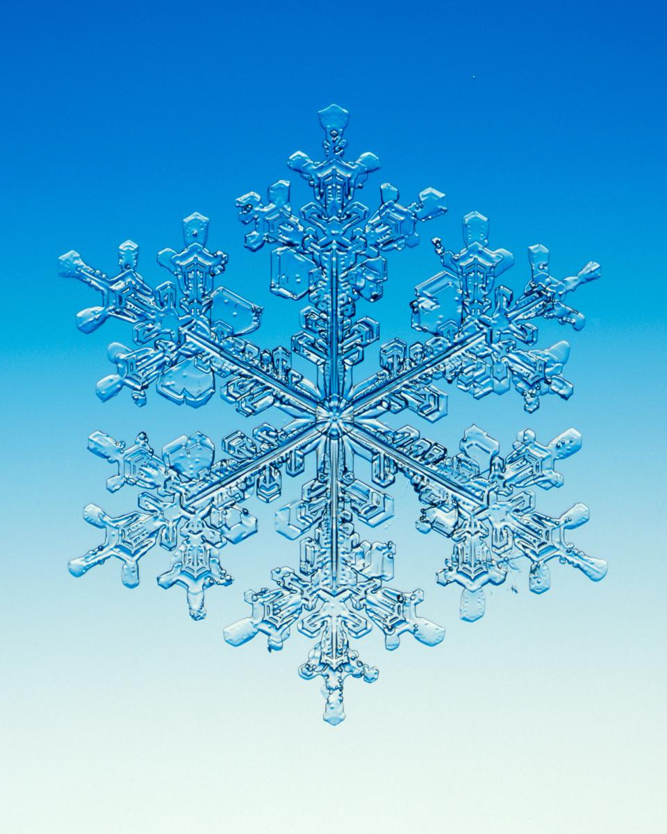 snowflake u2014 walter wick studio