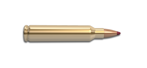NoslerCustom 204 Ruger Ammunition Cartridge