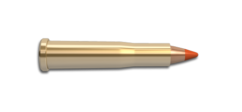NoslerCustom 22 Hornet Ammunition Cartridge