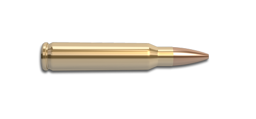 NoslerCustom 223 Rem Ammunition Cartridge