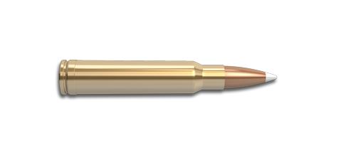 NoslerCustom 300 Win Mag Ammunition Cartridge