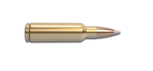 NoslerCustom 325 WSM Ammunition Cartridge