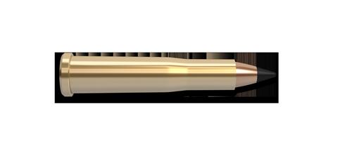 22 Hornet Varmageddon Ammunition