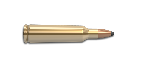 NoslerCustom 22-250 Rem Ammunition Cartridge