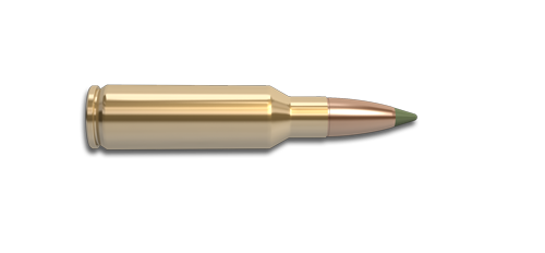 NoslerCustom 300 SAUM Ammunition Cartridge