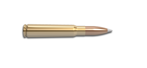 NoslerCustom 8mm Ammunition Cartridge