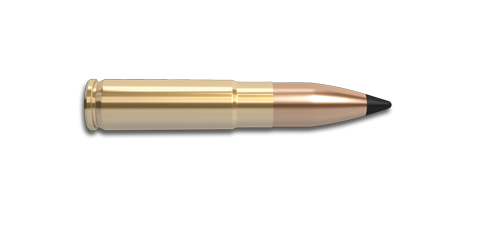 300 AAC Blackout Rifle Cartridge