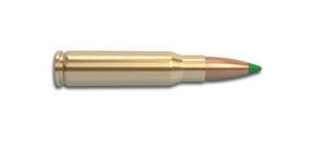 308 Winchester Rifle Cartridge