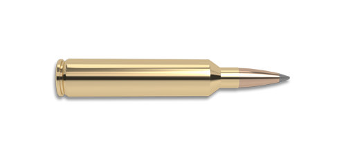26 Nosler Rifle Cartridge