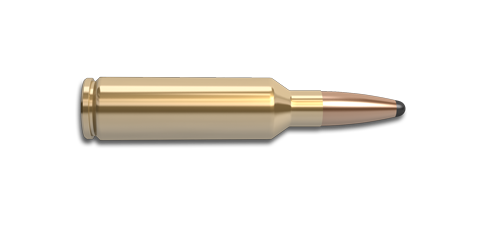 270 Winchester Short Magnum (WSM) Rifle Cartridge