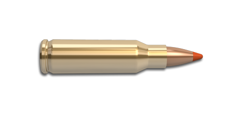 221 Remington Fireball Rifle Cartridge
