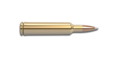 257 Weatherby Magnum Rifle Cartridge