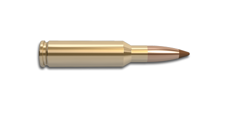 6.5 Creedmoor Rifle Cartridge