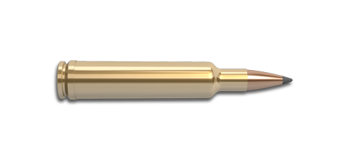 30-378 Weatherby Magnum Rifle Cartridge
