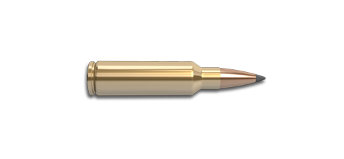300 Winchester Short Magnum (WSM) Rifle Cartridge