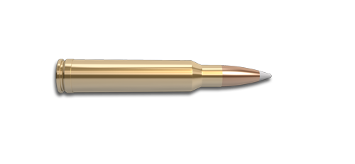 308 Norma Magnum Rifle Cartridge