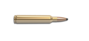 338 Remington Ultra Magnum Rifle Cartridge
