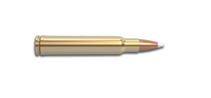 340 Weatherby Magnum Rifle Cartridge