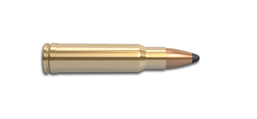 350 Remington Magnum Rifle Cartridge