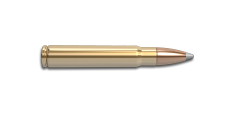 9.3x62mm Mauser Rifle Cartridge