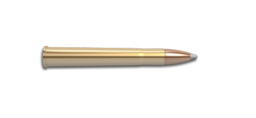 9.3x74mm R Rifle Cartridge