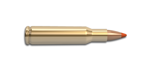 NoslerCustom 222 Rem Ammunition Cartridge