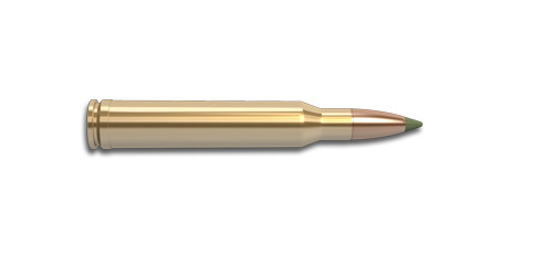 NoslerCustom 257 Wby Mag Ammunition Cartridge