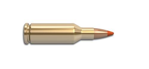 22 PPC-USA Rifle Cartridge