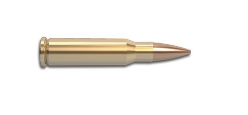 308 Marlin Express Rifle Cartridge