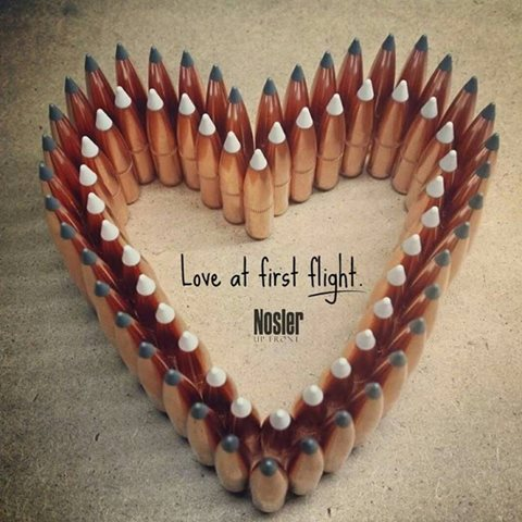 Love at First Flight Image