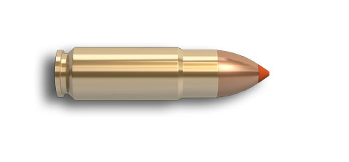 458 SOCOM Cartridge Image