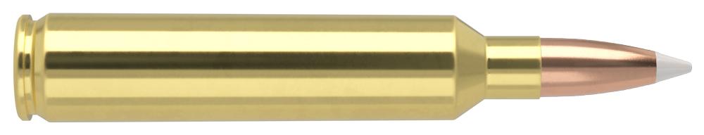 AmmunitionBuilder_28-Nosler-AB.jpg