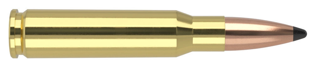 AmmunitionBuilder_308-WIN-PT.jpg