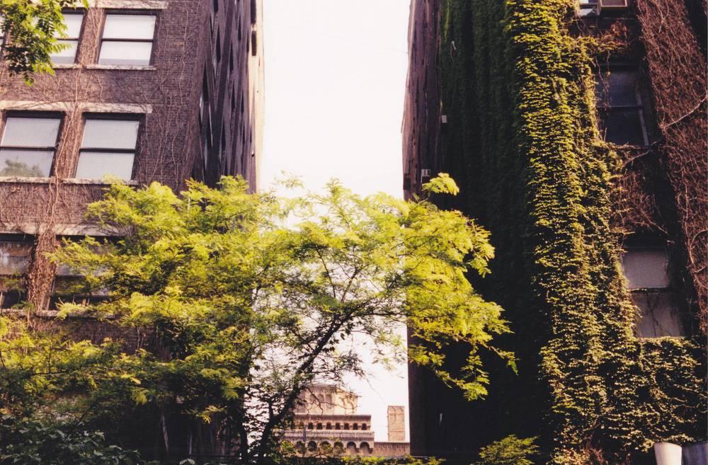 Greenwich Village, NYC 2003