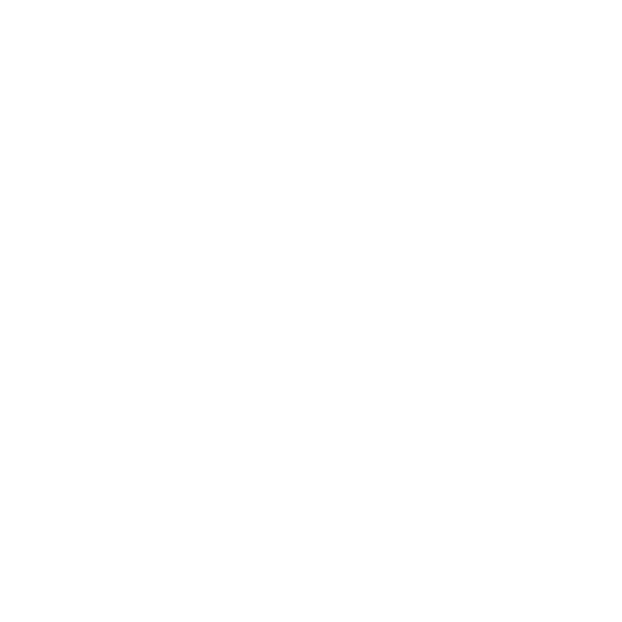 M U N N  B R O T H E R S | Destination Cinematographers