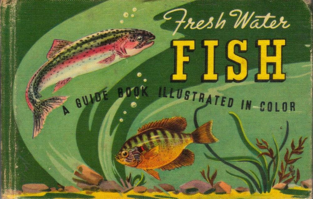 Freshwater Fish 1939 via ebay