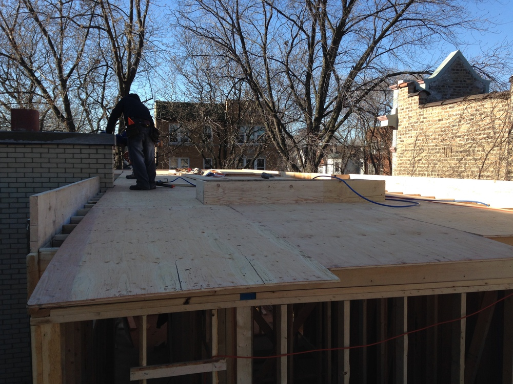 Roof sheathing on the addition