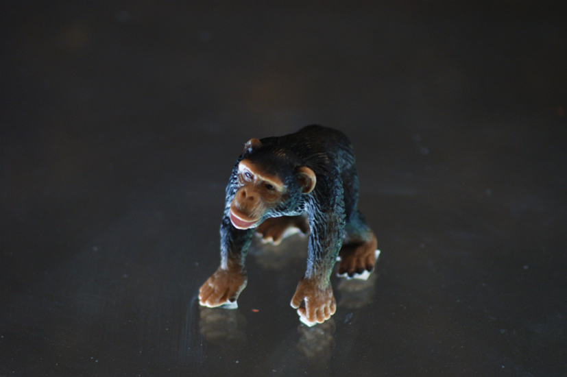 Monkey job ,   2010, Plastic Toy and Glass