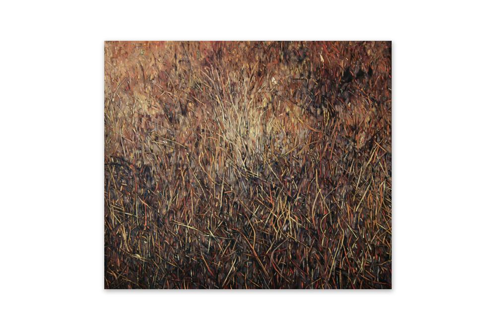 Maleza 1 , 2011, Oil on wood, 38 x 44 cm