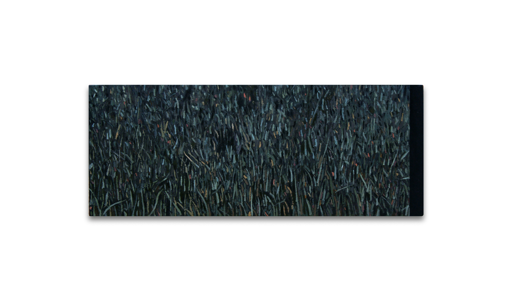 Maleza 7 , 2012, Oil on wood, 13 x 32.5 cm